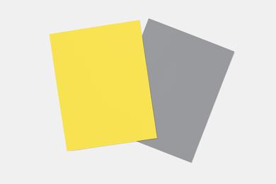 COY21-TPGSheetskopie.jpg