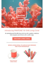 0-SWCD-pantone-fashion-home-interiors-tcx-cotton-swatch-color-of-the-year-2019-living-coral-jpg.jpg