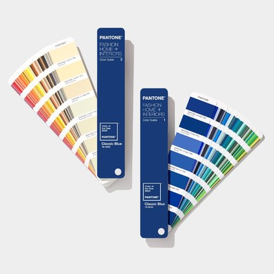 coy-pantone-fashion-home-interiors-tpg-limited-edition-color-of-the-year-2020-color-fan-deck-color-guide-1.jpg